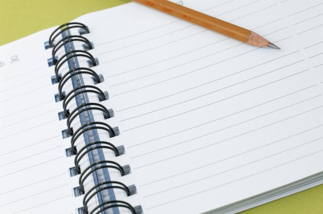 Blank ringbound notebook and pencil